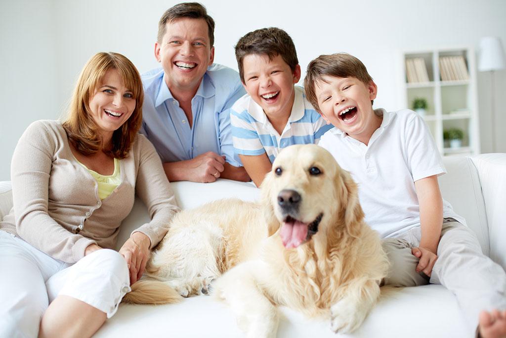 A kutyatartók valóban egészségesebbek?